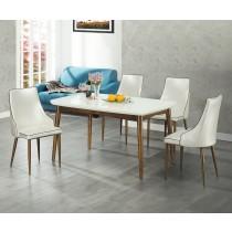 S100餐桌椅(1桌4椅)
